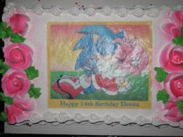 SonAmy Birthday Cake - 14th Birthday by Gallity
