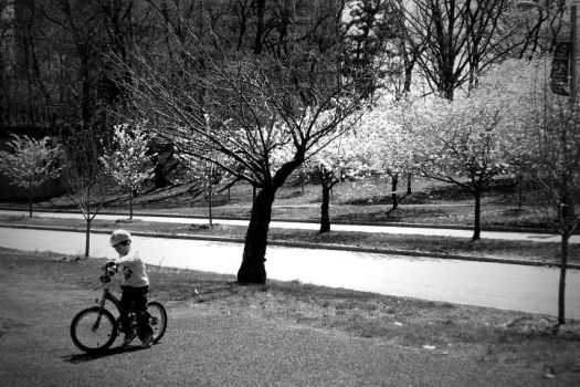 Boy On Bike by imaginary-imagery