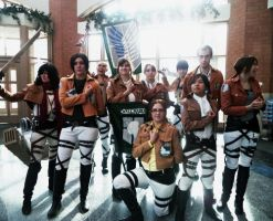 Welcome to the Survey Corps by 1HikariNaito1