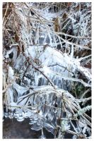 icicles by d0nr0n