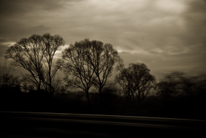 Dark Drive Home by Insomnolepsy
