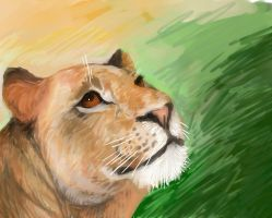 Lioness Speed Paint by Loxome