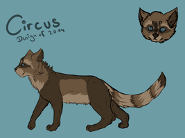 New Design of Circus !AKUTELL! by Vogelflug