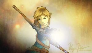 LoZ: A New Face of Courage by Soaryn-Bird