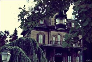 Phantom Manor 2 by Chococlems