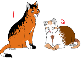 Cat adopts CLOSED by XxFlashxXAdopts