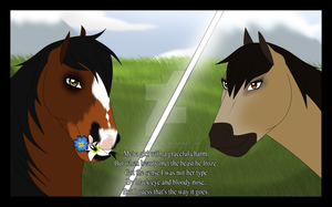 Breeding: A Horse in the headlights...? *EDIT* by tomboianimalmel