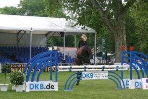 Show Jumping Stock 033 by LuDa-Stock