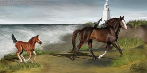 At The Beach. Foal and Mare by J0anna3
