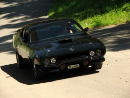 black roadrunner by AmericanMuscle