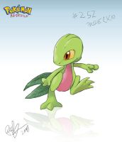 Pokemon ReDesign - Treecko by lord-phillock