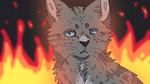 Ashfur Animation by whitepup