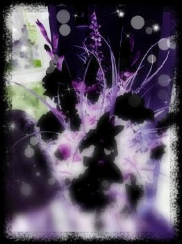 Black flowers by ColorfulSpikes