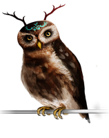 Owl Concept by geometric-harmartia