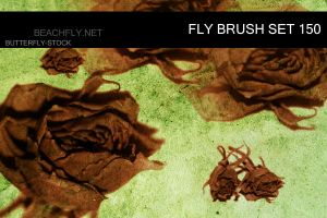 butterfly-stock_brush set 150 by butterfly-stock