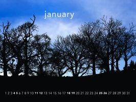 Plant trees - January by aaron4evr