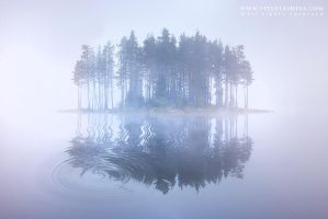 Foggy morning by tangratannakra