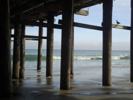 Under da Pier Santa Cruz by chronitonic