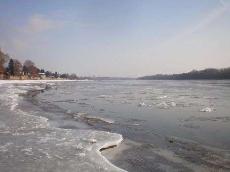 icy Danube by llallogan