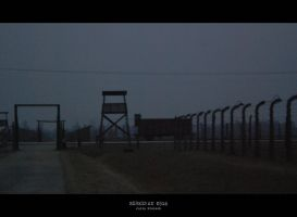 Birkenau 0516 by JuliaKretsch