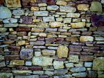 the wall by seneah
