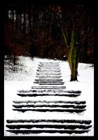Snowy steps by aikidoholic