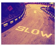 Just Go Slow by EnigmaticEntity