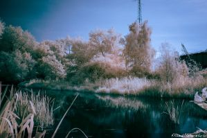 IR on the Canal by Auraomega