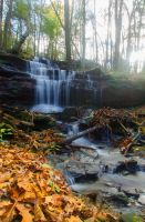 Dunn Brook by Magnius159