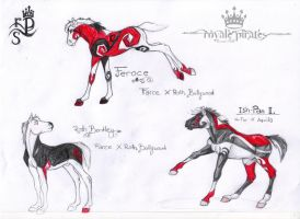 RPS Harley Foals by abosz007
