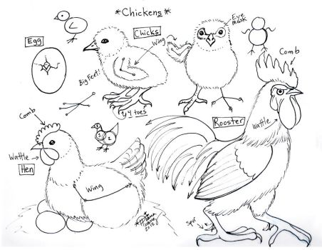 Draw Chickens by Diana-Huang