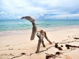 Beach dinosaur by peterpateman