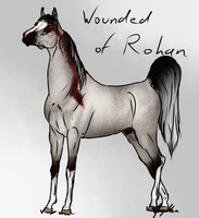 Wounded Of Rohan - SOLD by Meykka