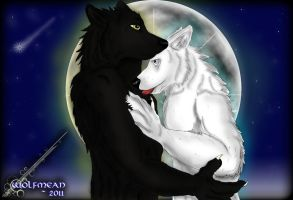 --- The Eternal Night --- by Wolfmean