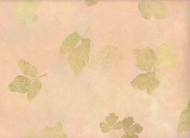 Leaf Print Paper Stock by ambersstock