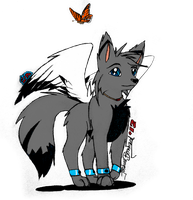 Winged Wolf by SilverwolvesForever