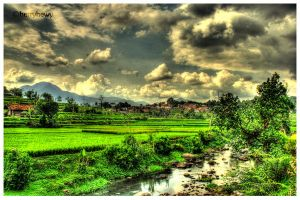 the beauty of west java.. by herryhewy