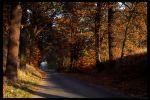The beautiful autumn by Nadine2390