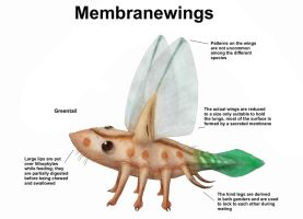 REP: The Membranewings by Ramul