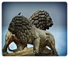 Two lions by jennystokes