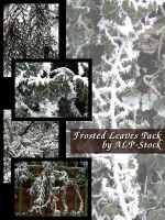 Frosted Leaves Pack by ALP-Stock