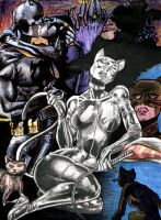 Catwoman by SpannerX23