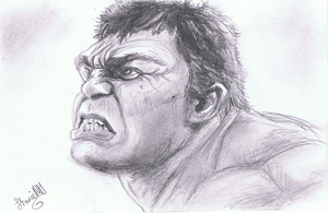 The hulk by ConkerTSquirrel