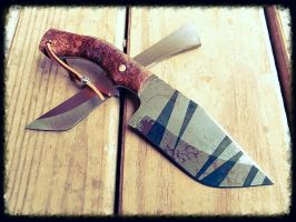 Tigershark Bowie in Spalted Maple by liontribe