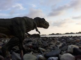 Papo T. rex in Chiavari beach by Dark-Hyena