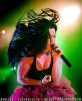 Evanescence rock goddess Amy Lee by Hernandez-Henson