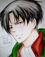 Heichou wishes you Good Luck! by sakura-streetfighter