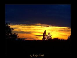 Sunset in gold by indja-art