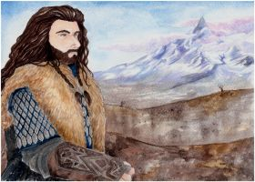 The Lonely Mountain... our home by Naivara