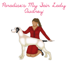 Paradise's My Fair Lady  'Audrey' by HiddenParadise1